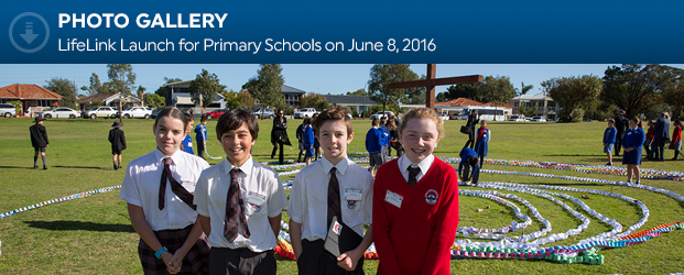 Download_Primary Launch